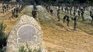 Plaque pierre pour domaine viticole